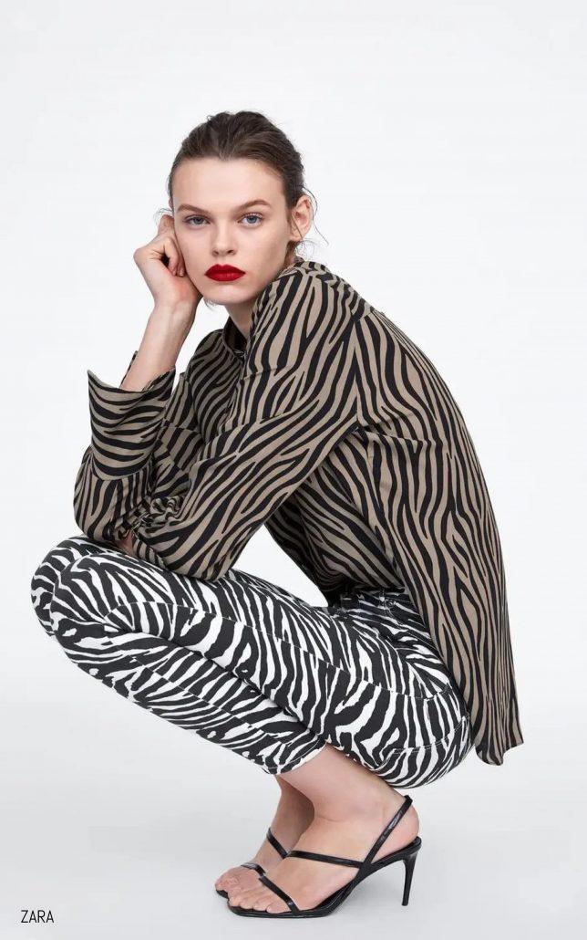 Zara Zebra Print Editorial